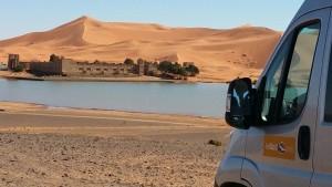 al desierto