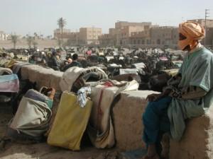 El mercado de burros de Rissani te sorprenderá, hay de todo y es tan diferente...
